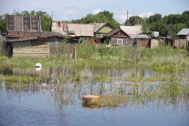 фото О новой волне паводка в Хабаровском крае предупредили гидрологи