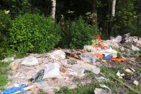 Две свалки на автобусных остановках устранили в Хабаровске